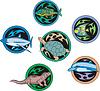 Round Dingbats mit Fischen und Reptilien