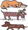 Set of funny slim dogs | 向量插图