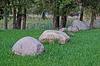 Kamienie | Stock Foto