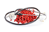 Goji berries with medical stethoscope | Stock Foto