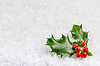 Рождество и новогодняя открытка с листьями падуба и | Фото
