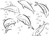 Fröhliche Meer Delfine | Stock Vektrografik