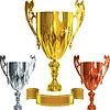Set Winning Erfolg Gold, Silber, Bronze cup | Stock Vektrografik