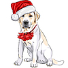 Pies Labrador w kapelusz Santa Claus z Christmas | Stock Vector Graphics