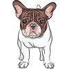 skizzieren Haushund Französisch Bulldog Breed
