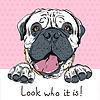 lustigen Comic-hipster Hund Bullmastiff