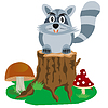 Racoon auf Hanf Baum