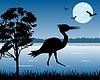 Storch auf See