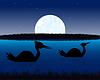 Nacht-Landschaft mit Wasser und Vogel