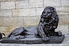Lion near Proval lake. Cauvasus landmarks | Stock Foto