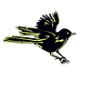 Black Bird Sparrow In Flight | Stock Vektrografik