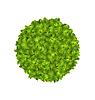 Eco Friendly Kreis-Rahmen Made in Green Leaves
