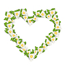 Kamillenblüten in Form Herz