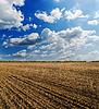 Czarny zaoranym polu pod błękitne niebo z chmurami | Stock Foto