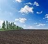 Czarny zaoranym polu pod błękitne niebo | Stock Foto