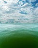Bewölktem Himmel über dem Meer mit grünen Ton | Stock Foto
