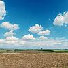 Czarny zaoranym polu pod błękitne niebo z białymi chmurami | Stock Foto