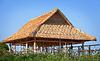 正在建设中的竹屋顶 | 免版税照片