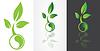 Ying Yang Symbolik mit grünem Blatt
