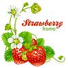 Клубника. Красные ягоды и белые цветы | Векторный клипарт
