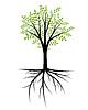 Абстрактные декоративное дерево с листвой и корнями | Векторный клипарт