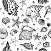 Meer-Hintergrund mit Muscheln
