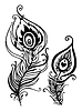 Piękne pawie pióro | Stock Vector Graphics