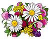 야생 꽃의 꽃다발 | Stock Vector Graphics