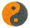오렌지와 블랙 렌즈 콩 형성 음과 양 기호 | Stock Foto
