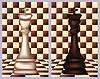 Weiß und Schwarz Schach König, Vektor-Illustration
