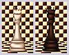 Weiß und Schwarz Schach-Königin, Vektor-Illustration