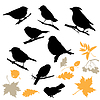Birds and Plants Silhouettes | Stock Vector Graphics