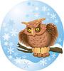 Милая сова на ветке в зимней овальной рамке | Векторный клипарт