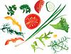 Set mit bunten Gemüse - Tomaten, Mais, Gurken,
