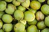 Tło zielone orzechy włoskie | Stock Foto