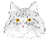 Fang graue Katze