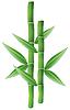 vector Bambus