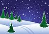 Winter-Wald von Tanne bei Nacht