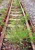 버려진 철도 트랙 | Stock Foto