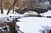 Gapstow Brücke | Stock Foto