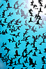 Set von Silhouetten von Vögeln auf blauem Hintergrund | Stock Illustration