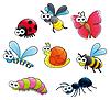 Insekte und Schnecke