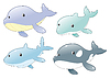 Dolphin, Shark, Whale and Killer Whale. Dolphin,
