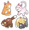 Familie der Katzen