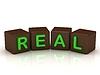 REAL Inschrift hellen grünen Buchstaben | Stock Illustration