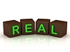 REAL inscription bright green letters | Stock Illustration