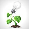 Green energy concept - Power Glühbirnen