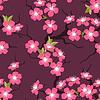 Kwiat wiśni szwu kwiaty | Stock Vector Graphics