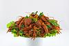 ID 3702299 | Gotowane raki na naczynia | Foto stockowe wysokiej rozdzielczości | KLIPARTO