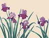 Hintergrund mit Iris | Stock Vektrografik